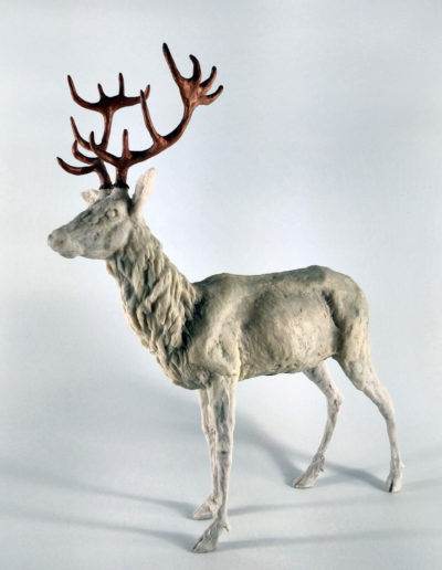 Stag 8/10