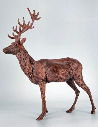 Stag - Copper Resin, Frances Clark, 2018 (Limited Edition 2/10)